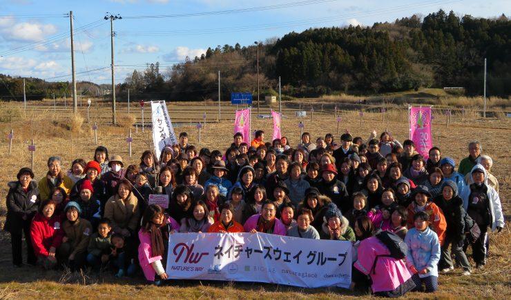 2017桜プロジェクト 057