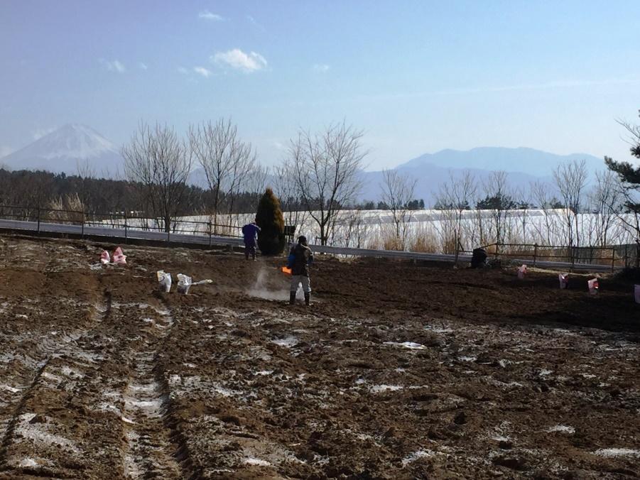 【農場だより】土壌の酸度調整