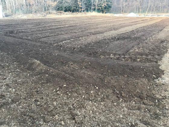 耕うん直後は石か土の塊か判別が困難