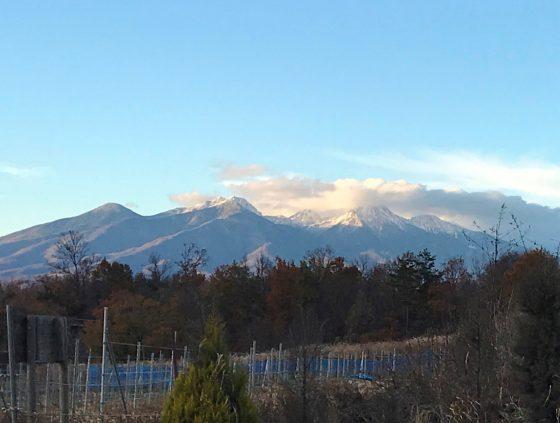 八ヶ岳 (12/5農場から撮影)
